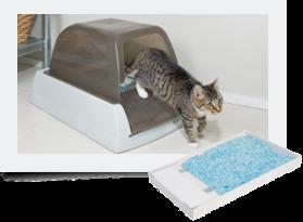 scoopfree ultra litter box - Scoopfree Litter Box